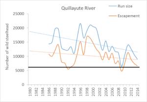 Quillayute figure.jpg