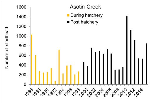 Asotin Graph
